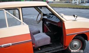 45230_73169_belorusskiy-pensioner-kolesit-na-samodelnom-avtomobile-fantaziya_16